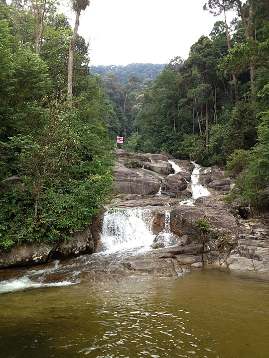 12 Malaysian rain forests and National Parks to see