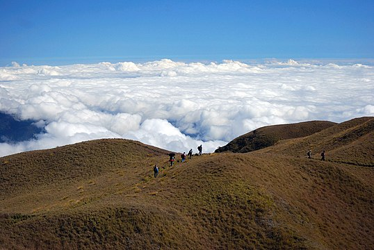 Pulag Mountain peak