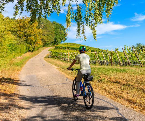 , The latest COVID-19 coronavirus and travel news from Provence