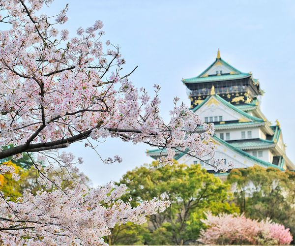 #Travel Local – The importance of Asia's domestic tourism during the pandemic