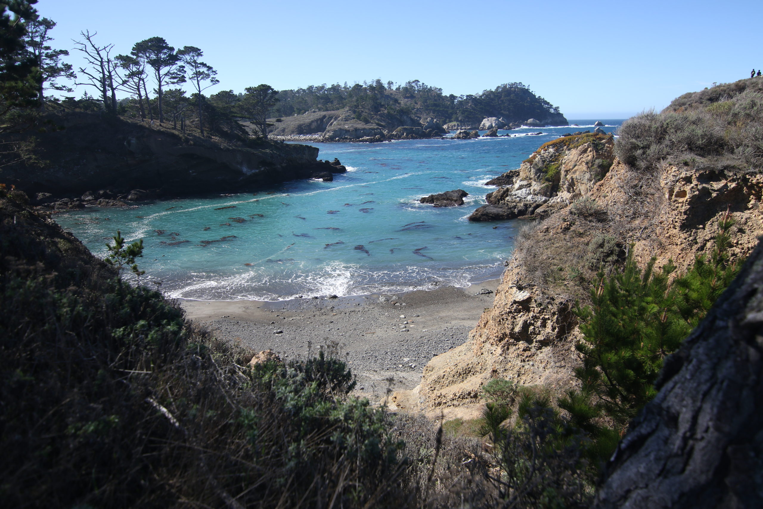 A Cultural Guide to Carmel-by-the-Sea • We Blog The World