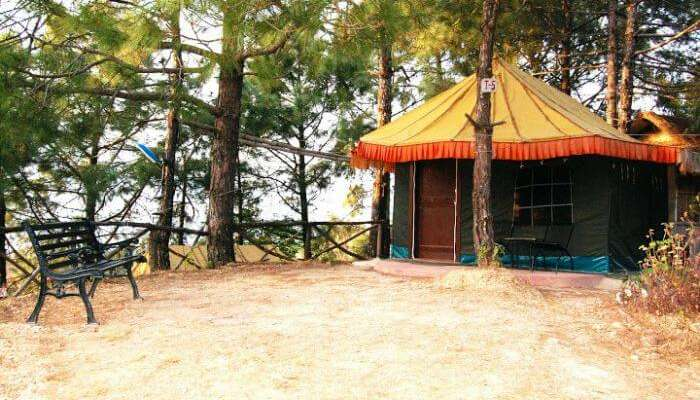 A Parkwood Tent Camp in Shoghi