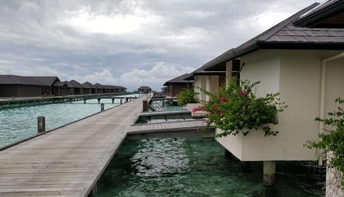 reached the Maldives resort