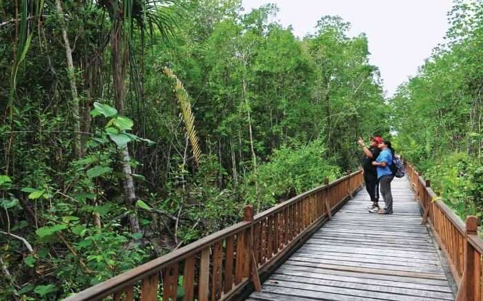 Travelers taking up ecotour in the lush green environs of Sikkim