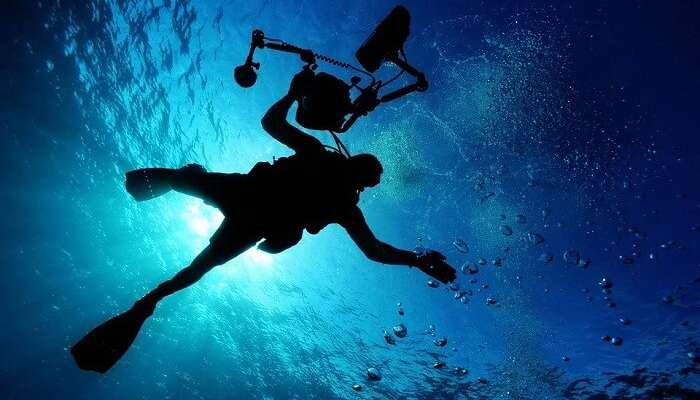 5 Best Spots For Scuba Diving In Canada One Must Visit