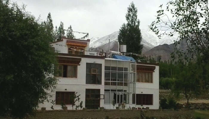 Tukchu homestay in Leh with imposing mountains and greenery all around