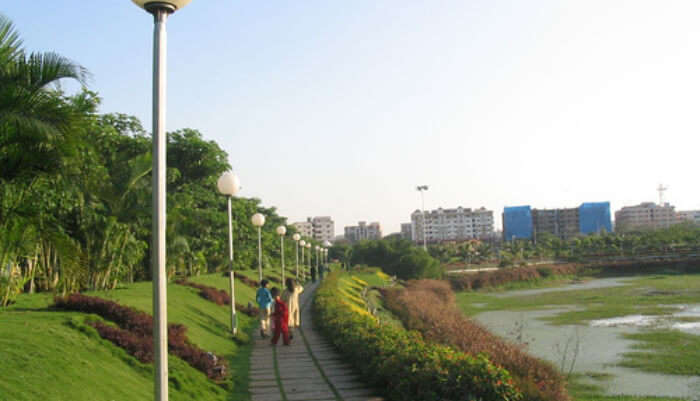 national park hyderabad view