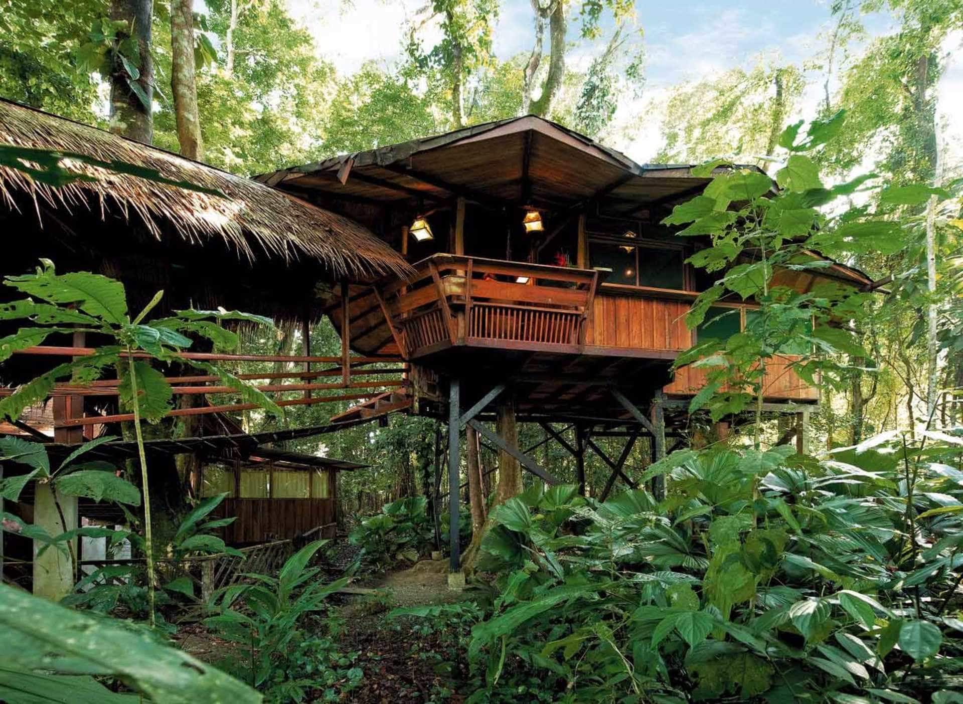 An exterior view of Treehouse Lodge in Punta Uva in Costa Rica