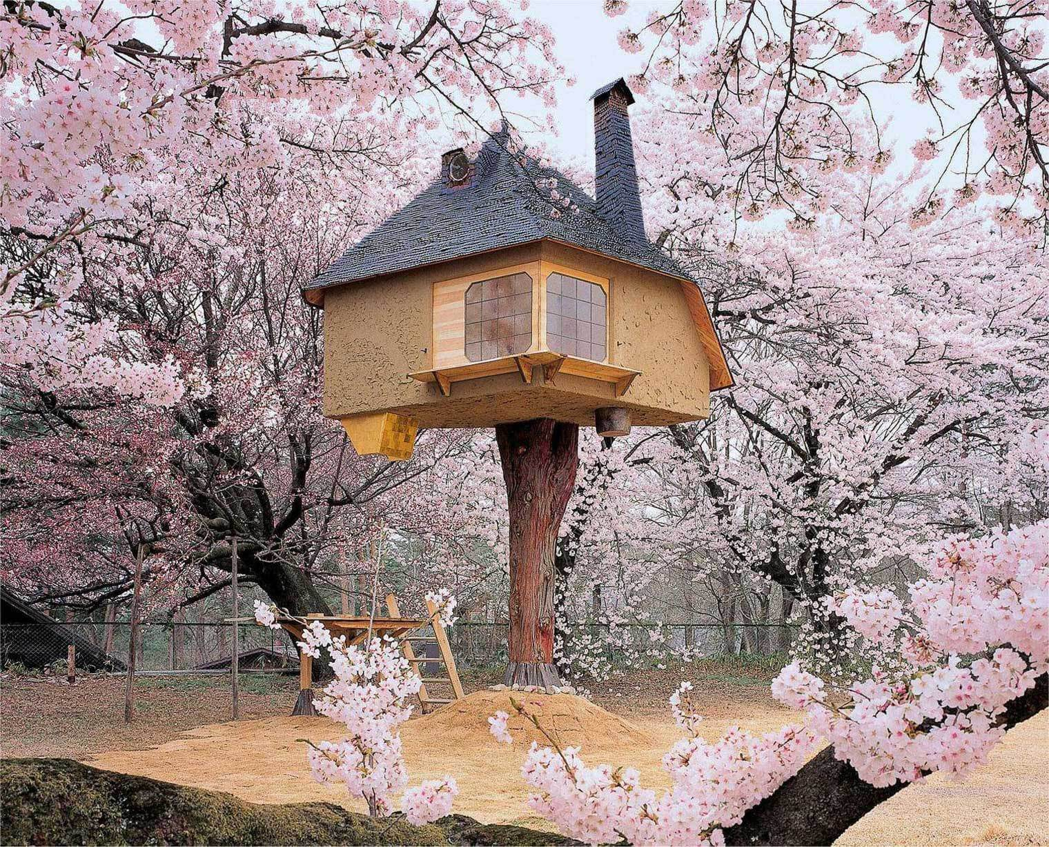 A view of Tetsu treehouse in Japan surrounded by cherry blossom