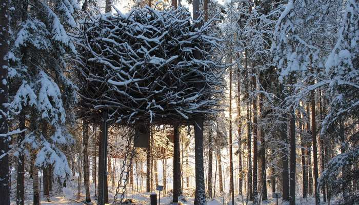 A beautiful view of Bird's Nest Treehouse in Sweden covered in snow