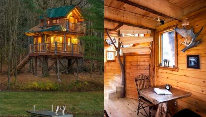 Beautiful interior and exterior views of Castle Treehouse in British Columbia in Canada