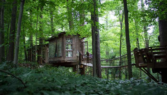 An exterior view of the secluded treehouse in Georgia nestled in forest